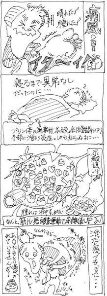 2013-06-28痛風.jpg